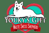 logo-youkys