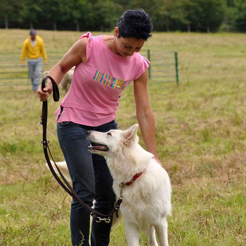 i-miei-cani-web cuccioli pastore svizzero Youky's Gift